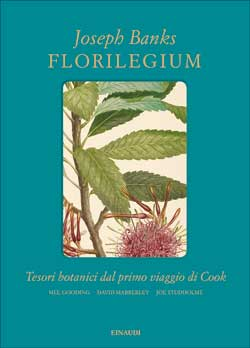 Vìride_Andrea di Salvo_Florilegium_Einaudi_Joseph banks.jpg