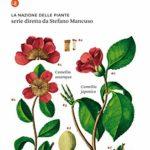 La nazione delle piante. Libri esplorazione, alla Pizzetti maniera