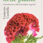 Le piante pensanti