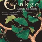 La rinascita del ginkgo, fossile vivente